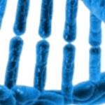 bioethique triptyque 1