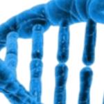 bioethique triptyque 2