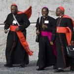 Synode des évêques pour l'Afrique, rome, 4-25 octobre 2009