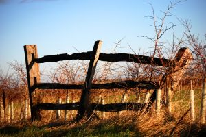 rural 4