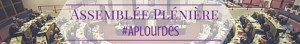 Bandeau AP Lourdes
