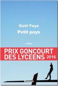 couv_petit_pays_Gaël_Faye