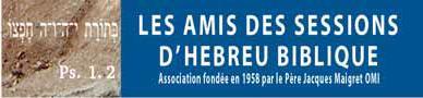 logo Amis des sessions d hebreu biblique