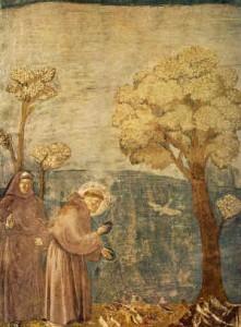Saint François 3