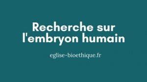 recherche embryon humain