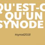 qu'est-ce qu'un synode
