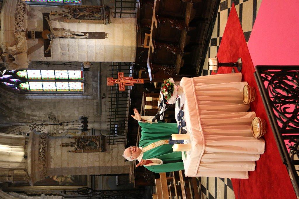 CEF - Focus sur le diocèse d'Arras - Père Bruno Dubreucq8