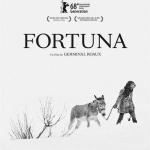 Film fortuna
