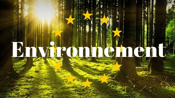 vignette environnement