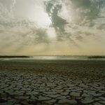 2005: Assèchement du fait du réchauffement climatique, au bord du lac de Guiers, parc du Djoudj, au nord du Sénégal, Afrique.