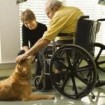 handicap thumbnail