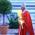 Messe des Rameaux 2020 depuis la Basilique Saint Pierre de Rome