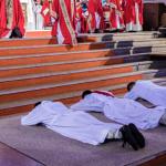 ordinations 2020 vignettes (1)