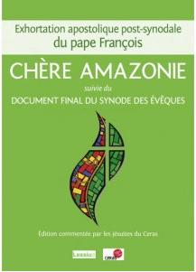 "Edition commentée ""Querida Amazonia"""