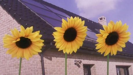 panneaux_solaires
